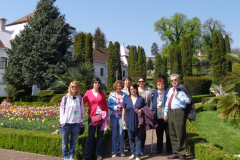 excursie botanica jibou